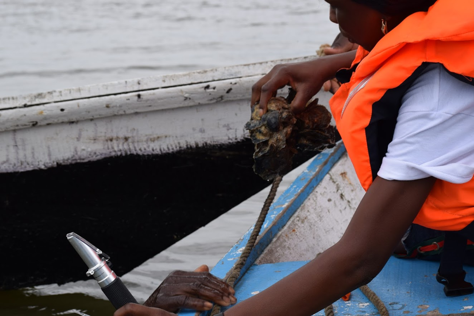 Densu Oyster Pickers Association, Ghana